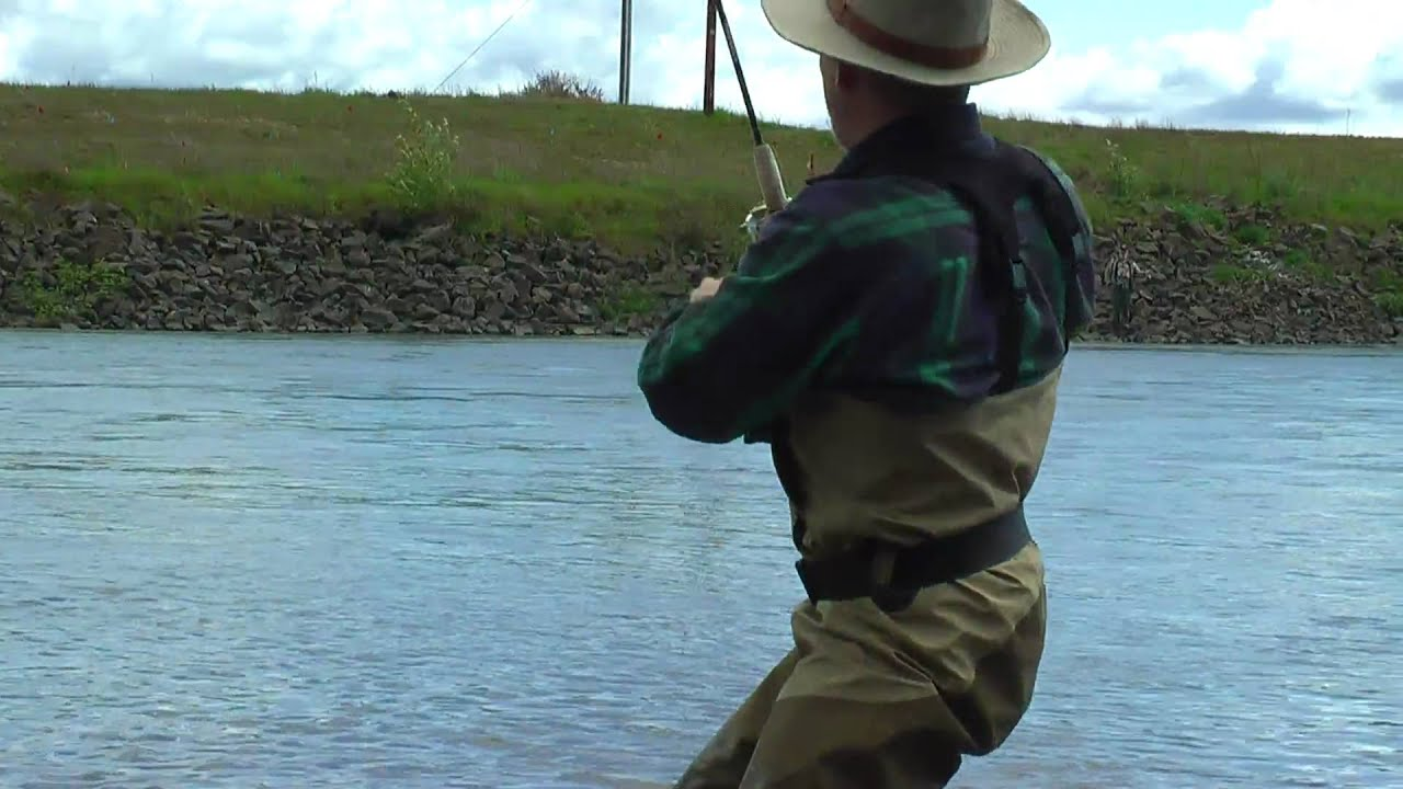 Fishing for salmon at the willamette river oregon youtube for Willamette river fishing report