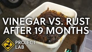 Vinegar rust removal, 19 months later (vlog)