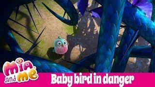 Babybird SOS  - Mia and me - Season 3 🌺🌸
