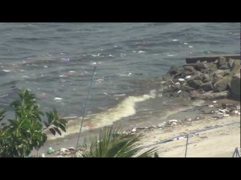 The super polluted beach - Guanabara Bay - Beach Beautiful Garden