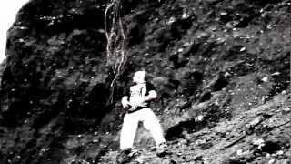 Cardan - Ромашковое поле