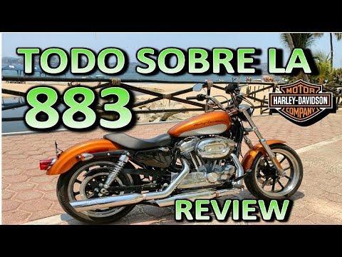 Harley Davidson  883 SUPERLOW   Review en Español 😎 Blitz Rider