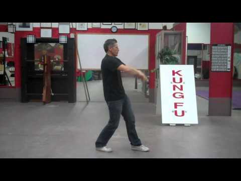 Secrets of Ip Man Wing Chun Chum Kiu Form in slow motion Image 1