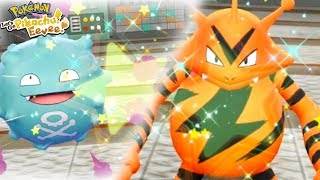 SHINY ELECTABUZZ & SHINY KOFFING REACTION! - Pokémon: Let's Go, Pikachu! and Let's Go, Eevee!