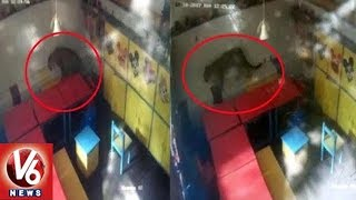 Leopard Enters Children Play School In Mumbai | CCTV Footage