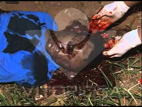 Garoto de 17 anos é morto no bairro Luizote