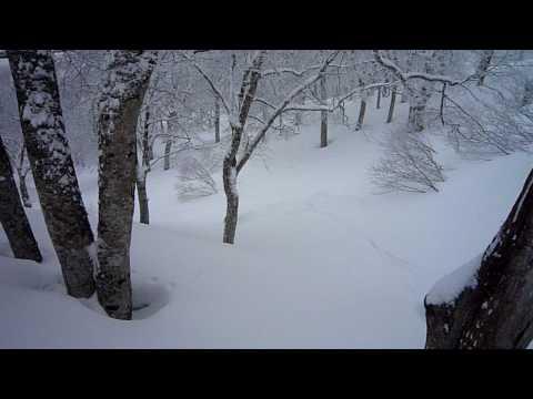 野沢温泉スキー場!! やまびこコース外!! パウダー!! 20100326