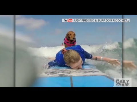 Therapy dog helps terminally ill sisters learn how to surf
