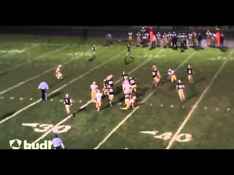 Tyler Robinson #44 LB-RB Teays Valley High School : Junior Year Highlights