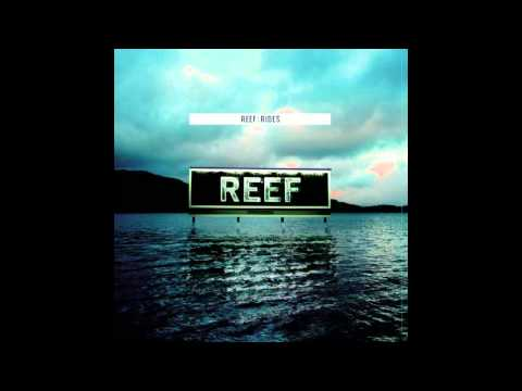 Reef - Funny Feeling