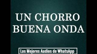 UN CHORRO BUENA ONDA - Los Mejores Audios De WhatsApp