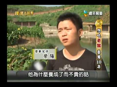 錢進人民幣-20140115 甲魚越老越值錢 想吃要等十年?!
