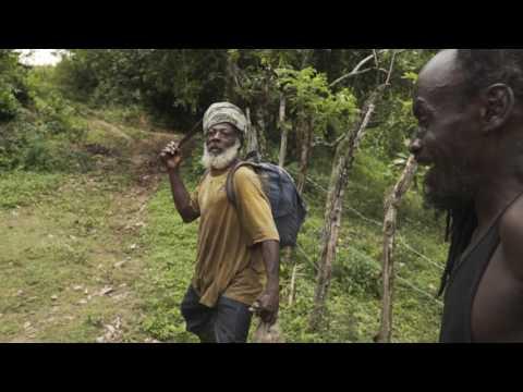TRAIL HUNTER JAMAICA thumbnail