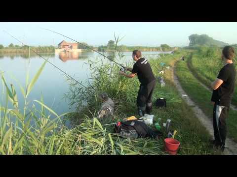 рыболовная база маевские пруды