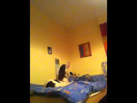Puppy singing to the Titanic theme