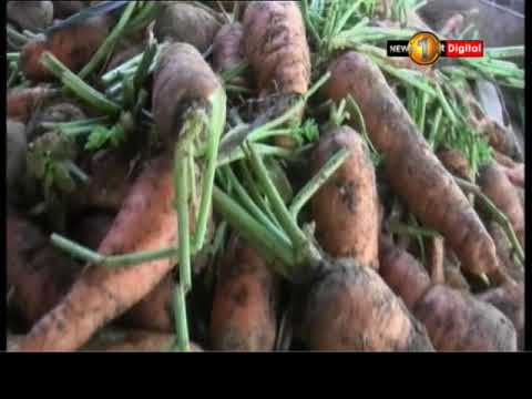 prices of vegetables|eng