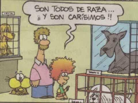 Pet shop (Gaturro)
