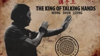 Wong Shun Leung The King of Talking Hands