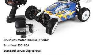 ZD Racing 08425 1/8 Buggy review