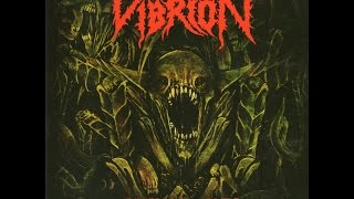 Watch Vibrion Full Of Sickness video