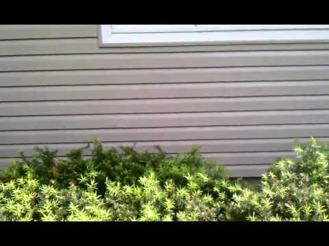 How To Recondition Faded Vinyl Siding Youtube