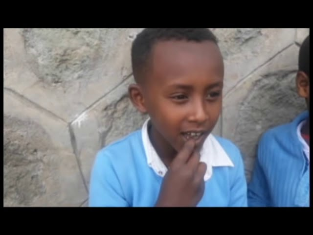 Ethiopia: Very Funny Question and Answer About the Upcoming Ethiopian PM   Feta vlogs