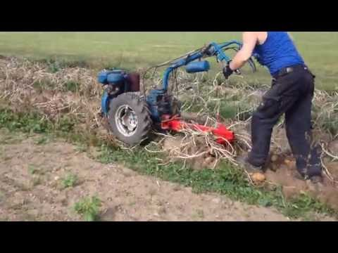 Nibbi AE 11 With homemade potato digger .  two wheel tractor.