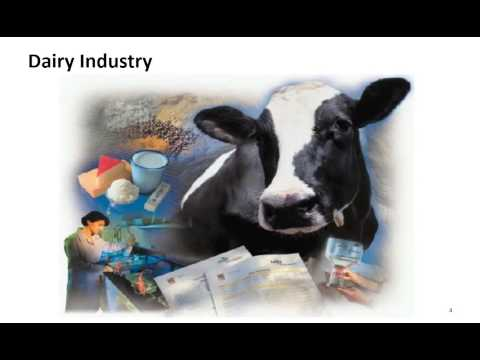 Insight into the Milk Procurement System in India