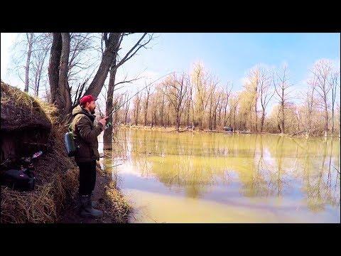 Ловля СУДАКА перед нерестом! .. Рыбалка весной на Малой реке [Sibiryak007]