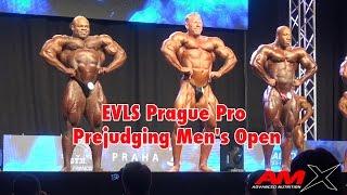 IFBB-Pro Dennis Wolf-10/2014 EVLS Prague Pro Prejudging Men