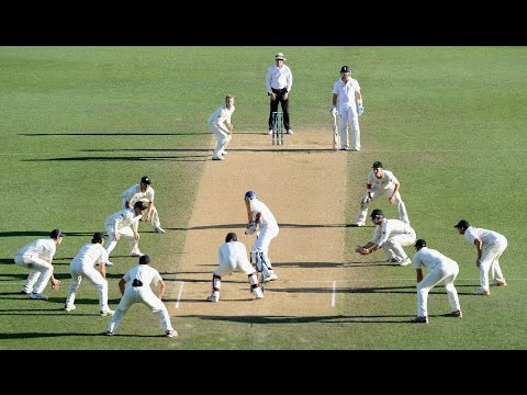 Top 10 Amaizing Moments in Cricket History | Cricket best moments | Cricket bloopers,