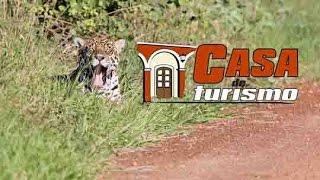 Kaa-Iya NP Casa de Turismo Road Movies Bolivia
