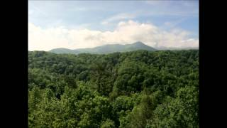 Larry Sparks - Smoky Mountain Memories