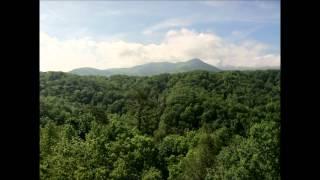 Larry Sparks - Smoky Mountain Memories