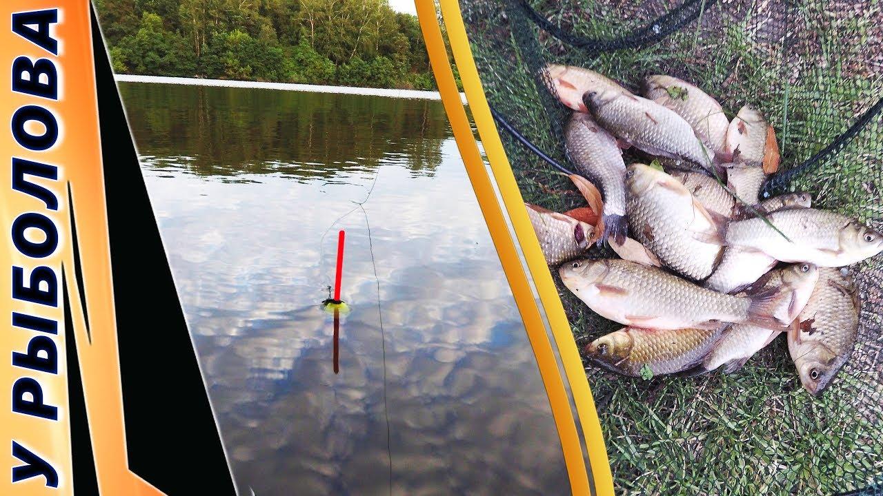 видео ловим рыбу на манку
