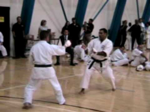 2009 Nikkei Games Karate Tournament Final