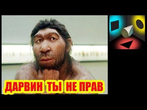 Россия: тупее придумать уже нечего?