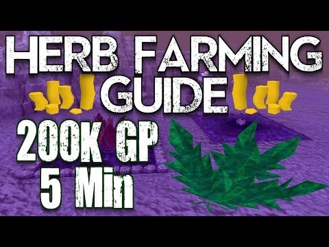 Runescape 3 – Herb Farming Guide 2013 Money Making Guide! Make Easy BANK!