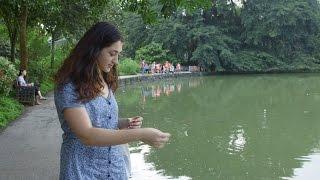 From Russia to Singapore: Svetlana's Curtin Singapore story