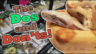 How to Shop at a Reptile Expo!