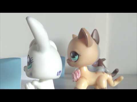 Littlest pet shop(LPS)The girl for the Prince(Девушка для принца) 1 сезон 3 серия
