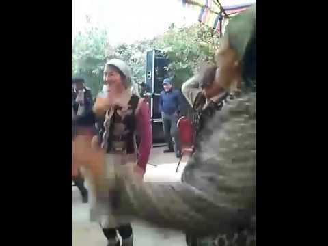 Современные узбекские свадьбы(Янгича озбек тойлари)