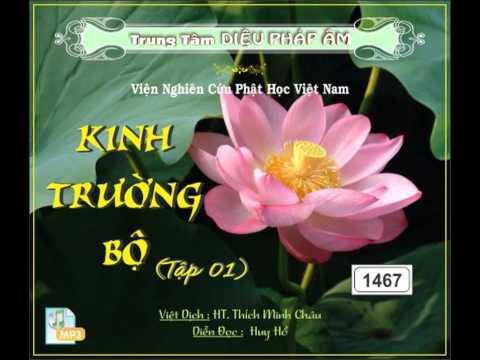 Kinh Trường Bộ (Việt Dịch: HT. Thích Minh Châu)