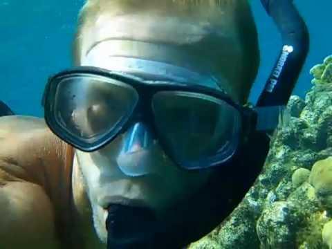 Roatan Coral Reef Explorer Snorkeling Roatan's Coral Reef