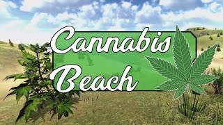 🌴 Phonk & Trap Music Mix Summer 2017 | Cannabis Beach 🌴