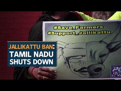 Tamil Nadu shuts down partially on Day 5 of protests against the ban on Jallikattu