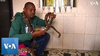 "Nigeria's ""Snake Man"" Saves Wild Animals"