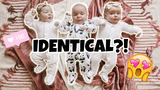Are the TRIPLETS Identical or Fraternal?! DNA Results Confirmed!