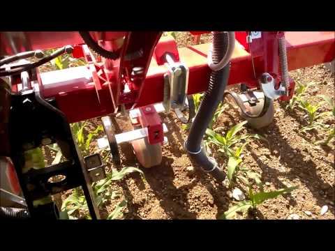 Macchinario agricolo Sarchiatrice per mais,soia,bietole - www.zillisnc.it - a San Quirino PN