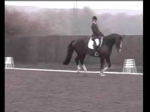 Ritchie – Novice Dressage Freestyle to Music